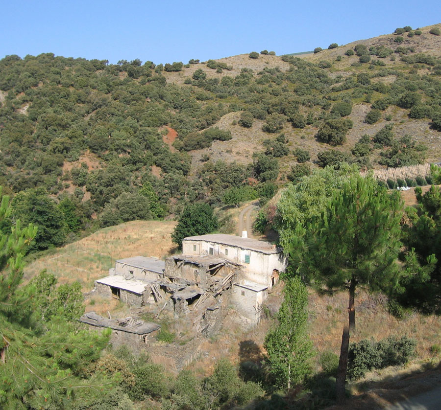 8 bedroom Finca for sale in Berchules